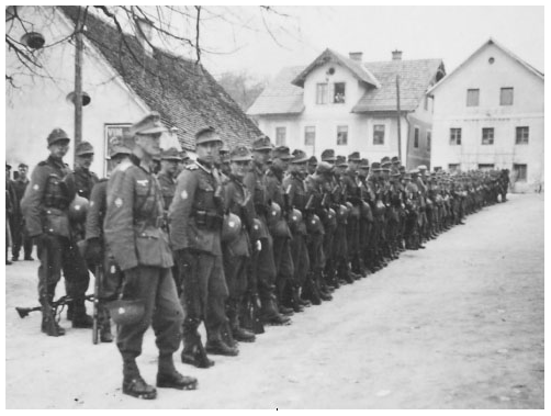 Hitler's Mountain Troops